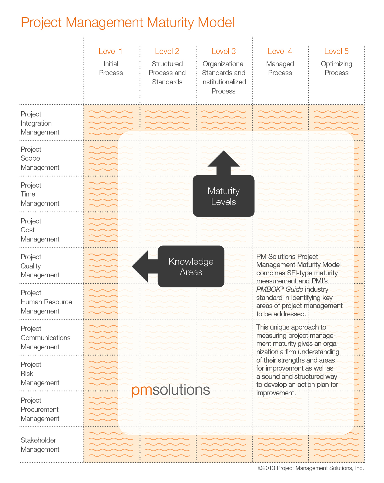 What is the Project Management Maturity Model (PMMM)?